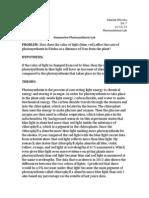final summative lab report