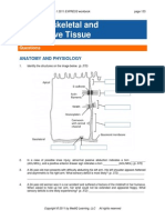 Musculoskeletal and Connective Tissue