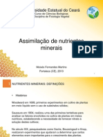 Apresentação Assimilacao Mineral.pptx