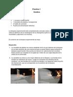 Topicos reporte de practicas.docx