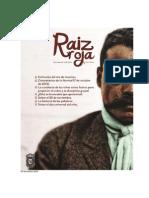 Revista Raiz Roja Noviembre 2013