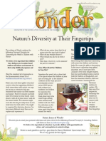 NACC Newsletter Nov/Dec 13