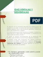 PLANTA de ESFALTO,Jose Luis Callacondo Perez