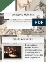 Anatomia Humana Introdução