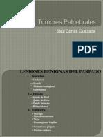 tumores palpebrales1saul.pptx