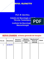 INervul_cranie.pdf