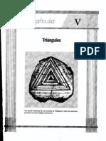 geometria5-triangulos