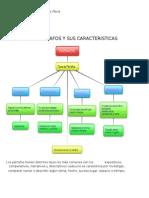 36583936 Tipos de Parrafos y Sus Caracteristicas