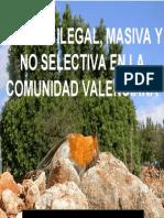 La caza ilegal, masiva y no selectiva en la Comunidad Valenciana