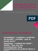Estudio de Factibilidad de un Proyecto