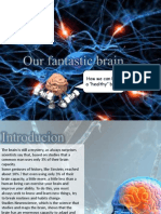 Our Fantastic Brain-bianca Peixinho! (4)
