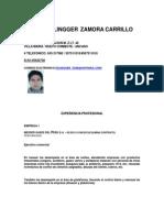 Curriculum Pablo Zamor