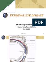 External Eye Disease - AO