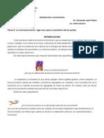 MacroEconomia_Mas_que_las_Sumas_Partes.doc