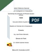 Tesis_12501.pdf