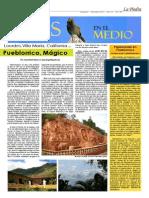 Páginas AVES EN EL MEDIO