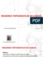 región topografica superficial cabeza head topographic anatomy