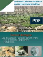 Clase 9 Bioplaguicidas