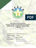 Plant Flora Inventory G.brinchang Cameron Highlands