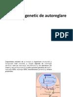 Sistemul Genetic de Autoreglare