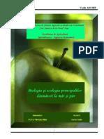 Proiect de Licenta La Entomologie 02.06.2006