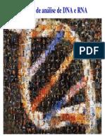Tecnicas de Analise de DNA e RNA