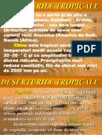 deserturiletropicale-120704133638-phpapp02