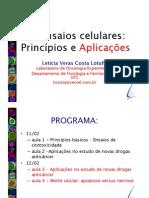 curso_lotufo3
