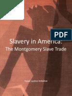 Slavery in America, short version