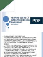 TEORÍAS SOBRE LA INTEGRACIÓN SOCIAL Y LA DIVERSIDAD