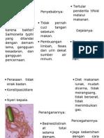pamflet demam tifoid