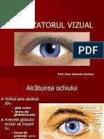 analizatorulvizual1
