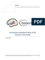 Connectome WB Tutorial UserGuide Beta v0.83
