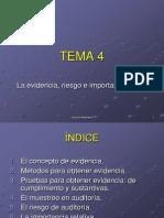 4-Evidencia, Riesgo e Importancia Relativa