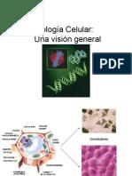 1.-Biología Celular