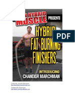 Hybrid Finishers Booklet 2