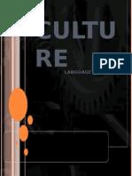Mod 2 Cultureii
