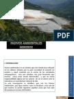 PASIVOS AMBIENTALES MINEROS - FISICOQUÍMICA 2