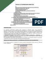 Regulacion de La Expresion Genetica Eucariotes