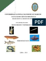 UNMSM GUIA CARATULA 2013.pdf
