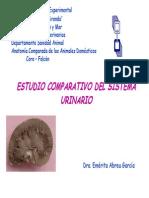 SISTEMA URINARIO-COMPARADA.pdf