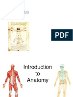 Anatomi Tutor