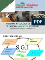 Sistemas Integrados de Gestión CFB