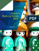 Vietnam Banking Survey 2013 - En