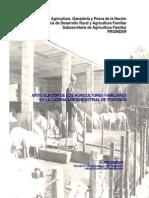Articulación de los agricultores familiares en la cadena agroindustrial de porcinos