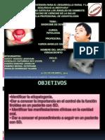 Patologia SINDROME de DONW_vengaodonto