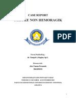Case Report Snh