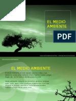 medio-ambiente3066
