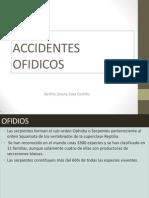 ACCIDENTES OFIDICOS