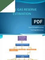 Shale Gas Reserve Estimation